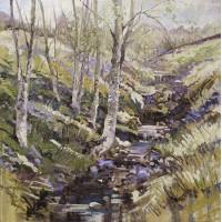 Silver Birch and Stream