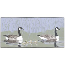 Early Morning Swim - Canada Geese  30% OFF