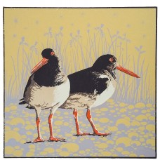 Late Summer Evening - Oyster Catchers
