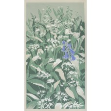 Wild Garlic and Bluebell   30% OFF
